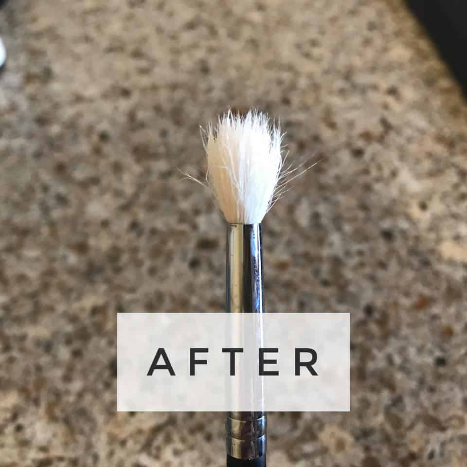 After Cleaning Your Brush